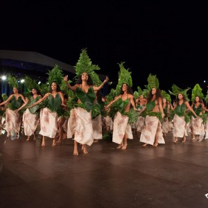 Dance costumes are always inspired by nature wwwtahitidanceonlinecom Picture byhellip